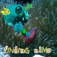 finding nimo