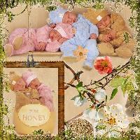 Anne Geddes Babys
