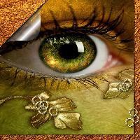 Eyes and eyelets