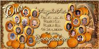 Our Pumpkin Patch