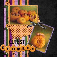 The Cutest Pumpkins