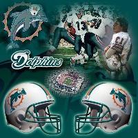 Miami Dolphins2