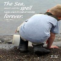 Wonder of the Sea