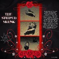 The Striped Skunk