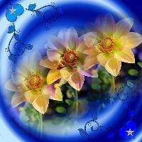 Blue and Yellow Dreams