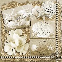Our Wedding  - the wedding invitation