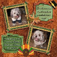 Thanksgiving08-Shaylee&JoJo