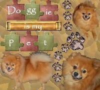 My Pet (by Dio)