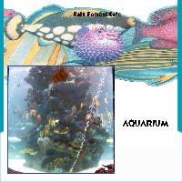 Rain Forrest Aquarium