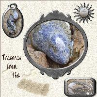 Treasure from the beach