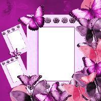 QP- Butterfly