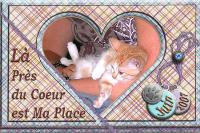 near heart kitty