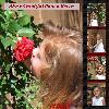 Abby in the Rose Garden
