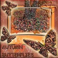 automn butterfly