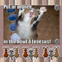 Preaching Kitty