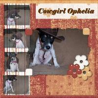 Cowgirl Ophelia