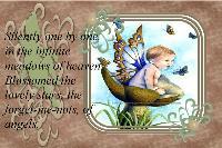 Fairy little boy