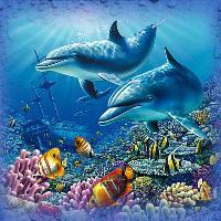 :: Life in the Ocean ::