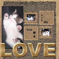 love me kitty