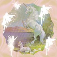 Just Unicorns And Fairies