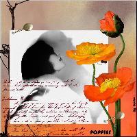 - *** Poppies *** -