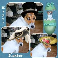 Happy Easter From Jack