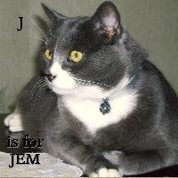 J is for Jem