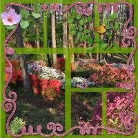 Callaway Gardens: Azalea Watch