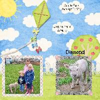 Diamond the Lamb