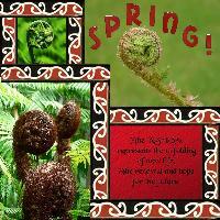 The Spring Koru