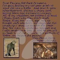 Pavlovs Cat Food