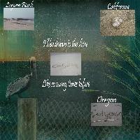 Calypso's Sea of Dreams Pt. 4