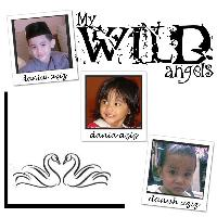 my wild angels