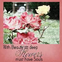Roses Have Souls