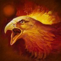 Pheonix in Fire