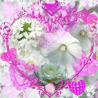 Pink Hearts & White Flowers
