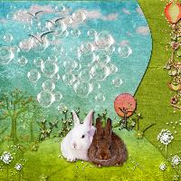 Bunnies and Bubbles