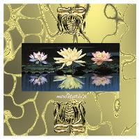 scrapbooking-my meditation