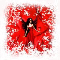 Carnation Lady