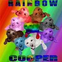 rainbow cooper
