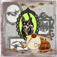 cooper as ladybird