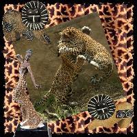 Jaguar Cubs 2437