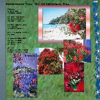 NZ Christmas Tree
