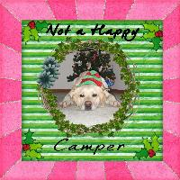 unhappy camper - don't want to pose