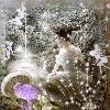 Mushrooms and Fairies
