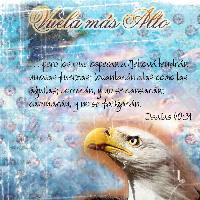 :: eagles::