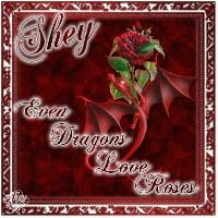 Even Dragons Love Roses