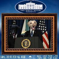 President Cooper