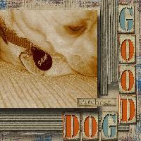 Sam Good Dog