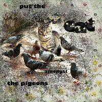 yoyo and the pigeons